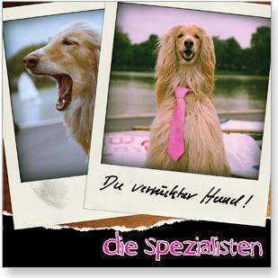 Die Spezialisten - CD - Du verrückter Hund!